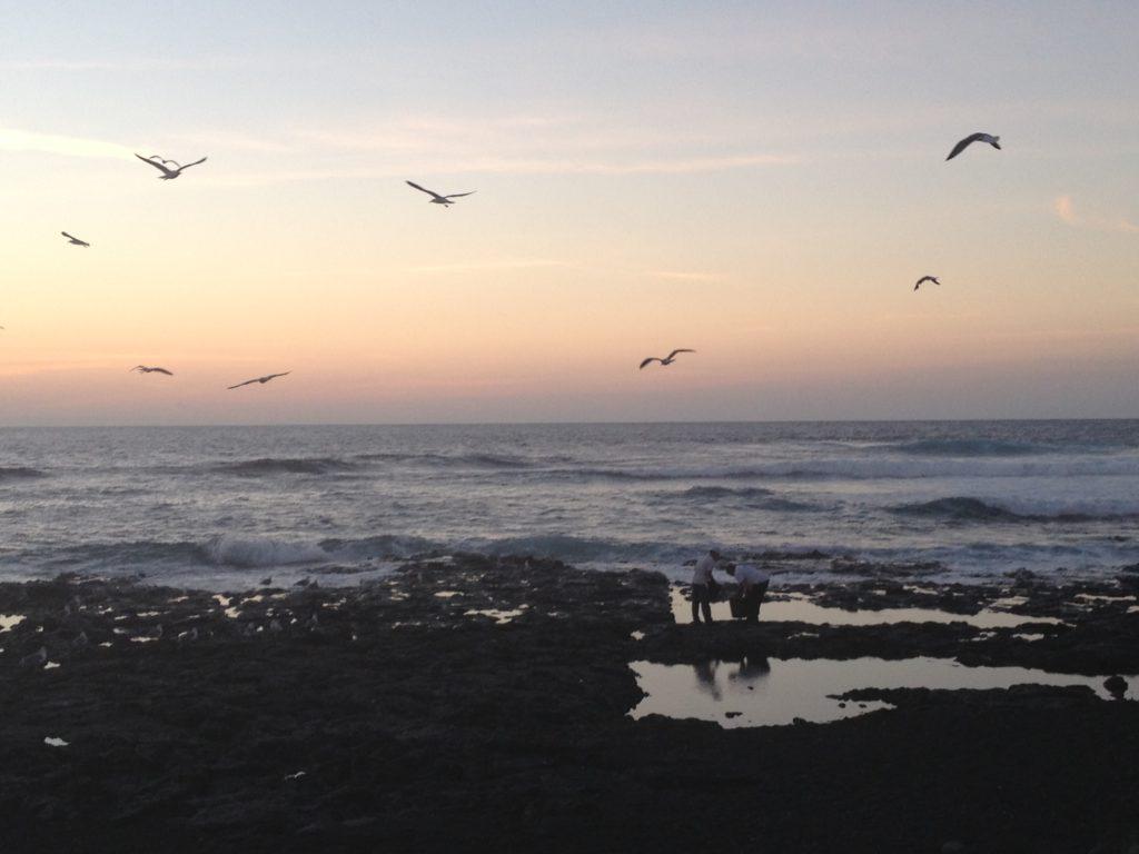 Zhineng Qigong Workshop op Lanzarote van 31 maart – 5 april 2019!
